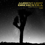 Ambient Translations Of U2