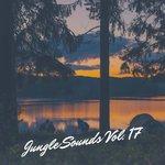 Jungle Sounds Vol 17