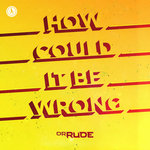 How Could It Be Wrong (Extended Mix)