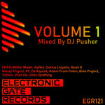 Electronic Gate Records Volume 1 (Mixed By DJ Pusher)