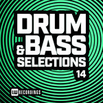 Drum & Bass Selections Vol 14