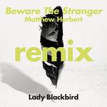 Beware The Stranger (Matthew Herbert Remix)