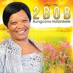Kungcono Ndizinikele
