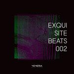 Exquisite Beats 002