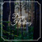 Deep Healing - In The Forest