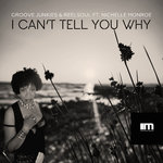 I Can't Tell You Why (Groove N' Soul Mixes)