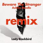 Beware The Stranger (Ashley Beedle Remix)