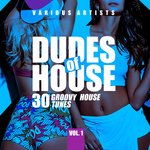Dudes Of House (30 Groovy House Tunes) Vol 1