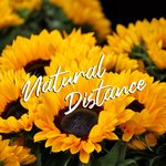 Natural Distance