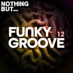 Nothing But... Funky Groove Vol 12