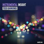 Instrumental Insight