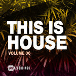 This Is House Vol 06