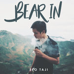Bear In