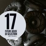 17 Future House DJ Selection Multibundle