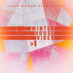 Winter House Vibes >1