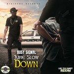 Juvie Slow Down