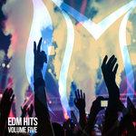EDM Hits Vol 5