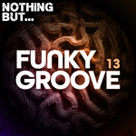 Nothing But... Funky Groove Vol 13