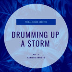 Drumming Up A Storm (Tribal House Grooves) Vol 3