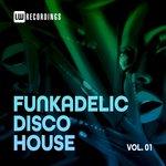 Funkadelic Disco House 01