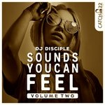 Sounds You Can Feel Vol 2