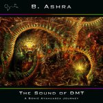 The Sound Of DMT (A Sonic Ayahuasca Journey)