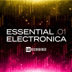 Essential Electronica Vol 01