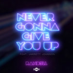 Never Gonna Give You Up (Extended Mix)