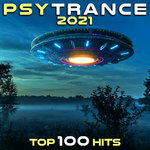 PsyTrance 2021 Top 100 Hits (unmixed tracks)