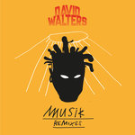 Musik (Remixes)