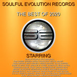 Soulful Evolution Records The Best Of 2020