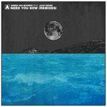 Need You Now (Remixes)