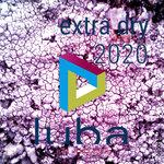Paradox Tunes Extra Dry