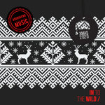 In To The Wild - Xmas 2020