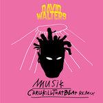 Musik (ChrisKillThatBeat Remix)