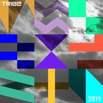 Tribe Records Presents: Tribe Vibe 2019