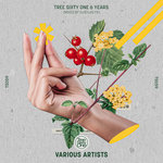 Tree Sixty One 6 Years (unmixed tracks)