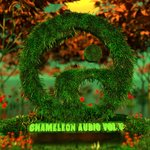 Chameleon Audio Vol 5