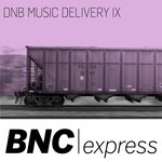 DNB Music Delivery IX
