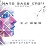 Hardbass Experience