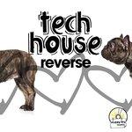 Tech House Reverse