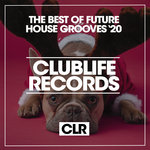 The Best Of Future House Grooves '20