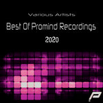 Best Of Promind Recordings 2020