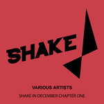Shake In December Chapter One