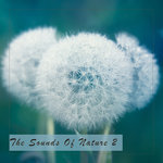 The Sounds Of Nature 2