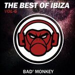 The Best Of Ibiza Vol 6, Compiled By Bad Monkey
