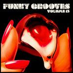 Funky Grooves Vol 13