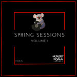Spring Sessions Volume 1 2020 (unmixed tracks)