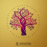 Steyoyoke Perception Vol 08