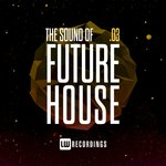 The Sound Of Future House Vol 3